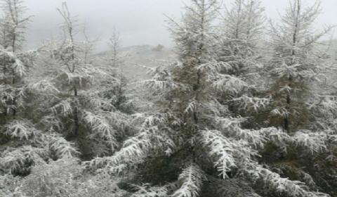 北京降下下半年初雪 门头沟等地大山漫天飘雪粉妆玉砌